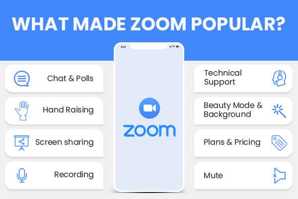Zoom Popularity