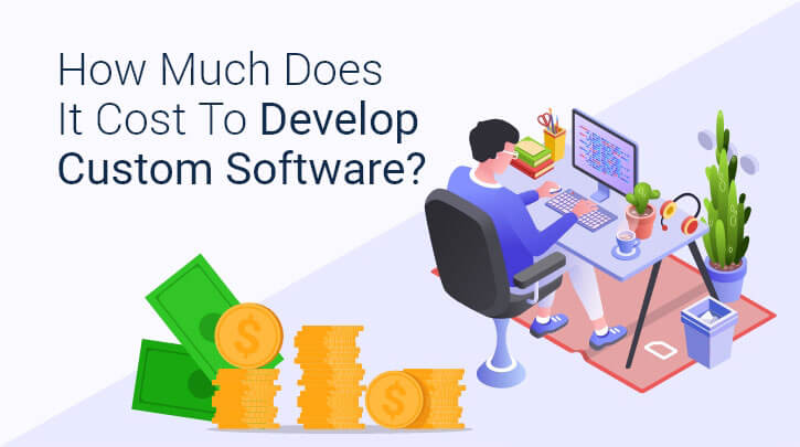 How Much Does Custom Software Development Cost for the Industry?