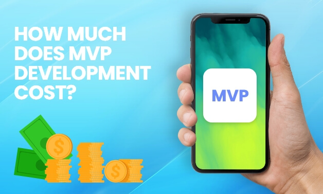 Cost to build MVP