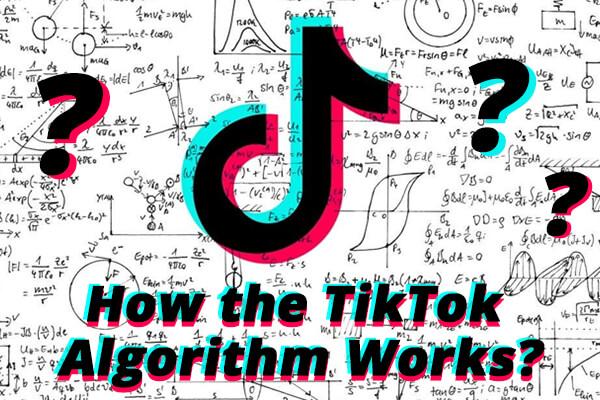 TikTok App Working Process