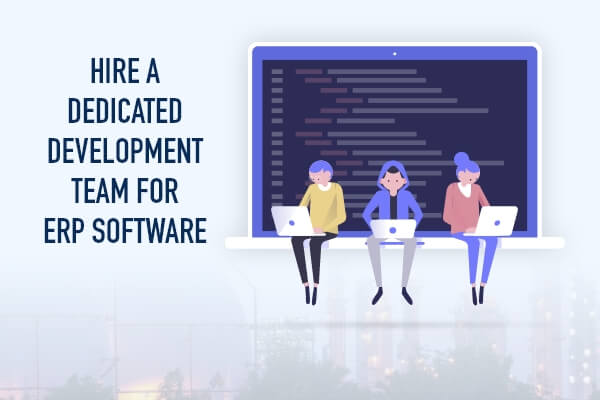 Hire ERP Developers