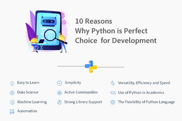 Python for web application development