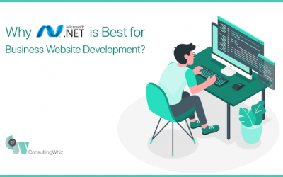 Why is Dot NET the Most Usable Framework for Custom Software Development?